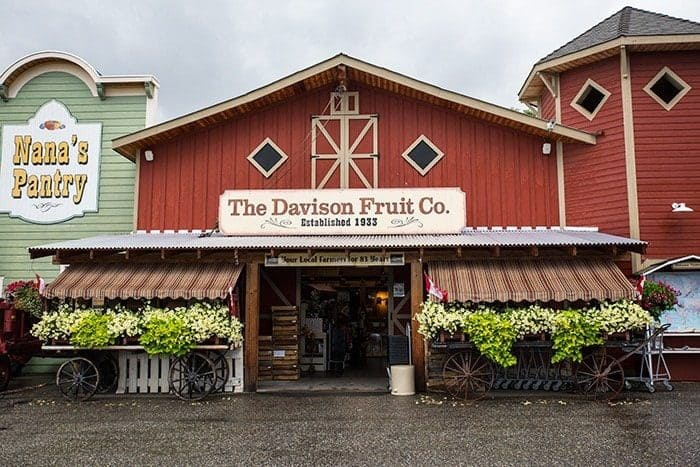 The Davison Orchards in Vernon, British Columbia - photo of Orchard and Market