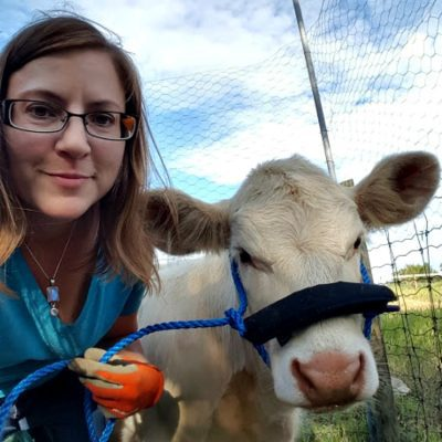 Calf Rescue 2016 : Calf Halter Training