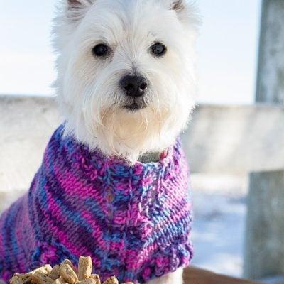 Zoe's Best- Mint Homemade Dog Treats