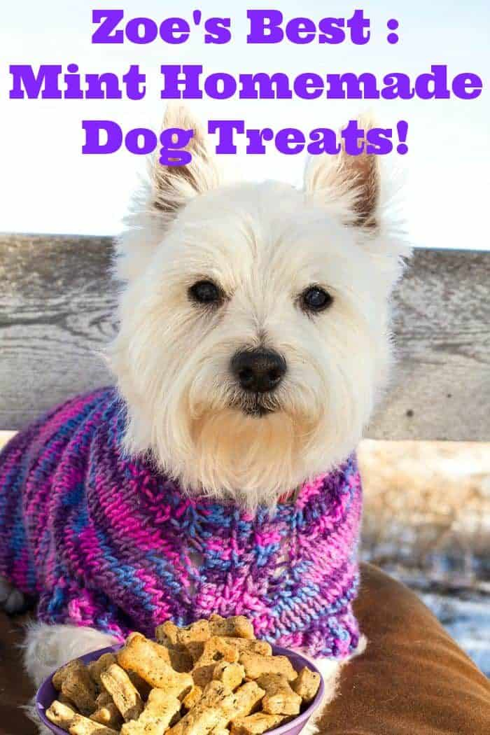 Zoe's Best- Mint Homemade Dog Treats! Helps with your dog's bad breath!