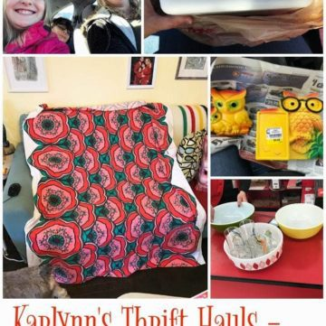 Karlynn's Thrift Hauls – March 19th Edition