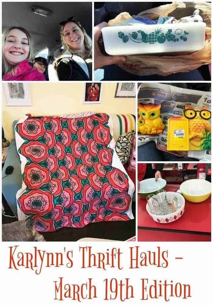 Collage photo of Karlynn's Thrift Hauls