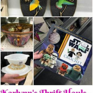 collage of Karlynn's Weekly Thrift Haul
