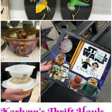 Karlynn's Weekly Thrift Haul – March 26th