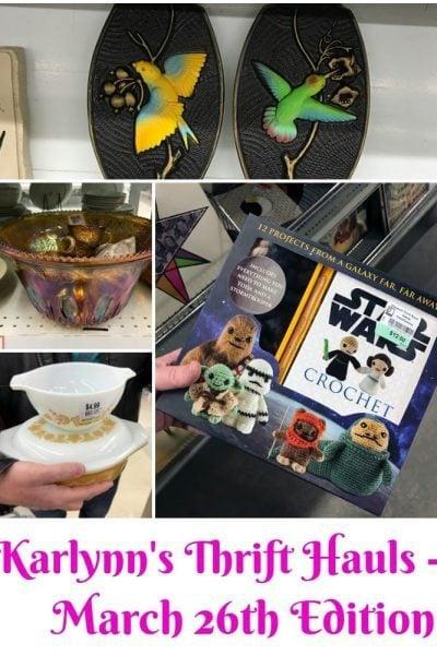 Karlynn's Weekly Thrift Haul – March 26th