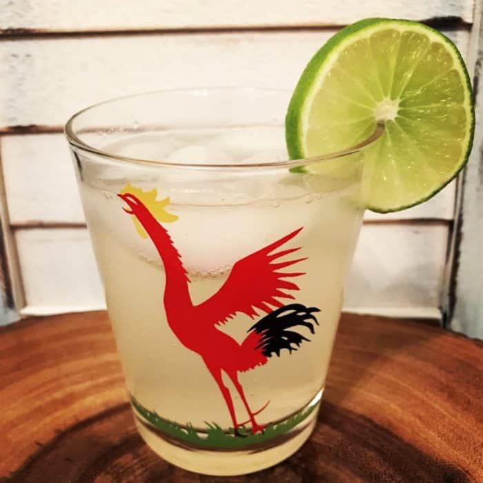 a glass of Gin Swizzle garnish with a slice of lime