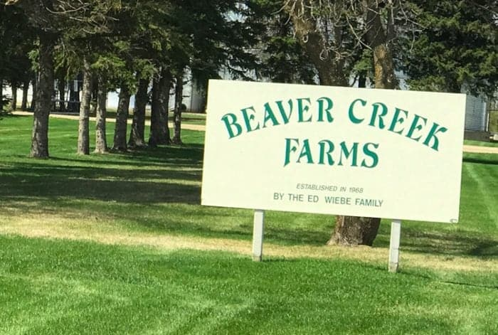 Beaver Creek Farms Signage, tall pine trees at the background