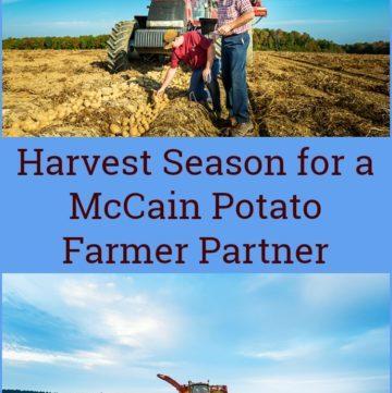 Harvest Season for a McCain Potato Farmer Partner