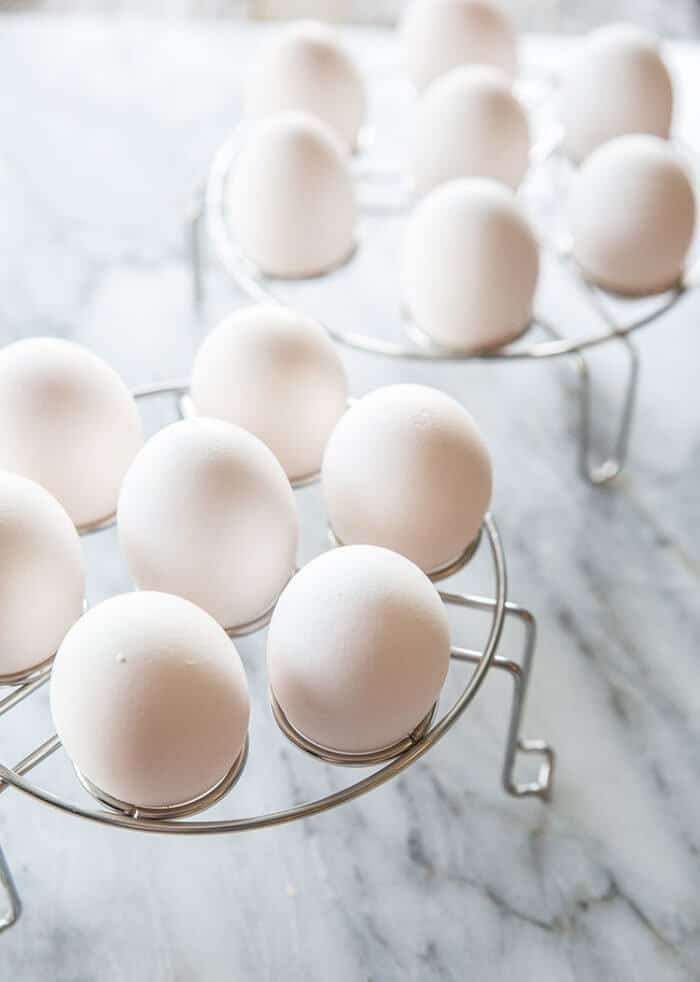 brand new egg racks with fresh eggs