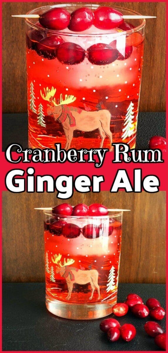 This deliicous Cranberry Rum Ginger Ale is an Excellent #Cocktail / #Mocktail for the holidays! #christmas #holidays #xmas #cocktails #drink