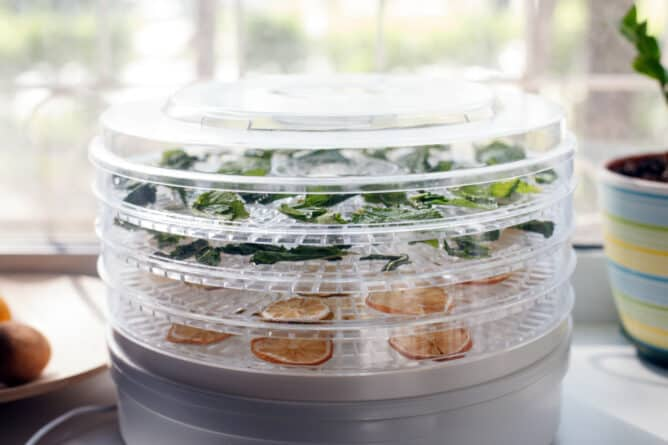 what is a dehydrator