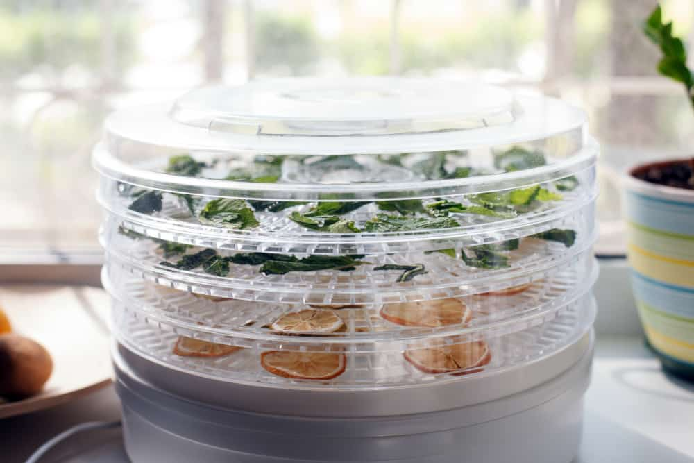 food dehydrator with some vegetable leaves and fruit slices inside