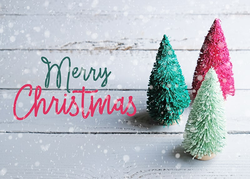 Merry Christmas greetings on a snowy white wood background with little Christmas trees on side