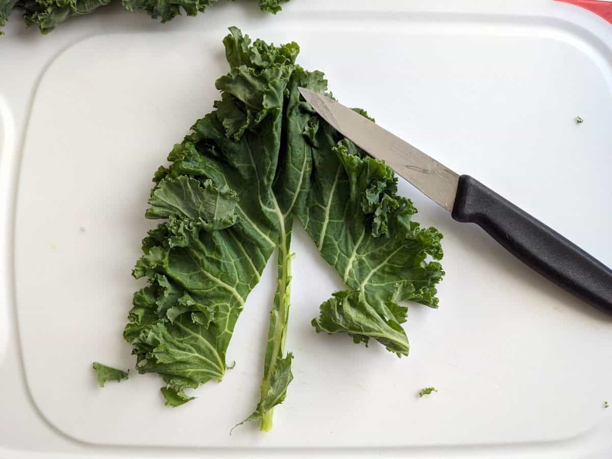 Removing the stems from the kale