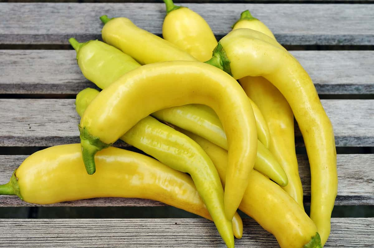 A cluster of banana peppers on the wooden slats of a table.